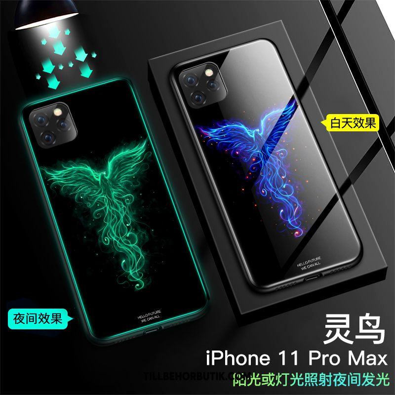 iPhone 11 Pro Max Skal Kreativa All Inclusive Mobil Telefon, iPhone 11 Pro Max Fodral Skydd Lysande
